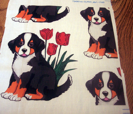 bernese_puppy_with_tulips