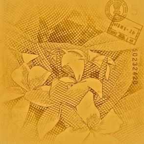 Plumeria vintage etching, yellow/brown base