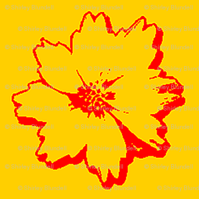 Coreopsis Sketch