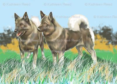 Norwegian Elkhounds 3 fabric