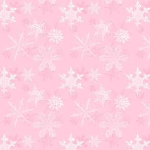 Pink Frost