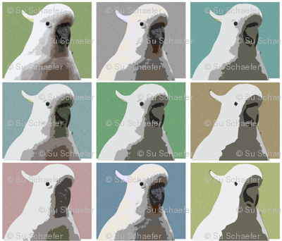 Subdued AW Cockatoos by Su_G