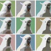 Rrrrrrrrrrrcockie-warhol-base-canvases-2-crosshatch-no-beak_copy_shop_thumb