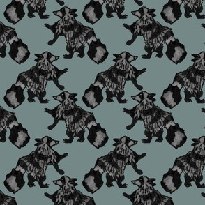 Houndstooth Raccoons