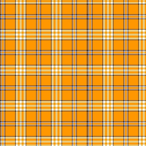 ORANGE GROVE PLAID
