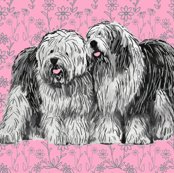R1668857_1668857_rold_english_sheepdogs_with_flowers_shop_thumb