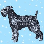 1669333_rkerry_blue_terrier_with_stars_shop_thumb