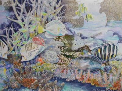 Coral Reef 2.