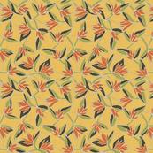 ave del paraiso (yellow)