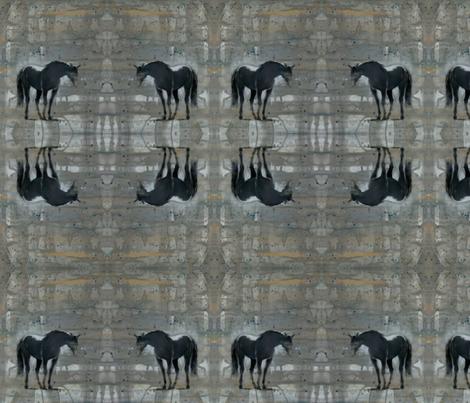 Shadow fabric by rosalind_san_felipe on Spoonflower - custom fabric