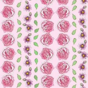 Pink Carnation Stripe