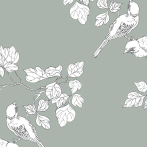 birdies bluegrey