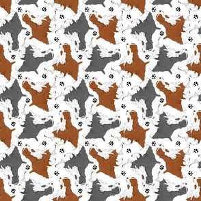 Trotting Springer Spaniels and paws - white