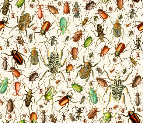 beetle #1 fabric by mel_w on Spoonflower - custom fabric