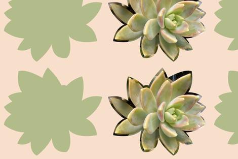 Succulent Cushion - 1 fabric by owlandchickadee on Spoonflower - custom fabric