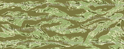 Sixth Scale Desert Tiger Stripe Camo