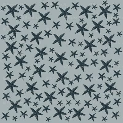 Vintage Starfish