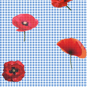 gingham and poppies