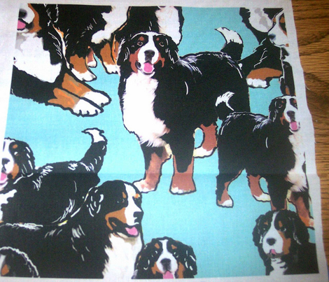 bernese Mountain dog mural fabric