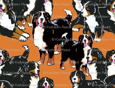 bernese Mountain dog mural fabric