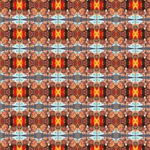 Moroccan LSD