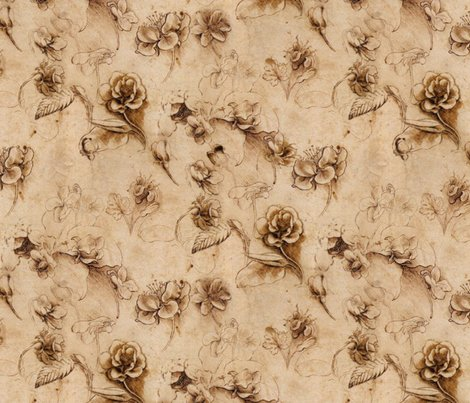 Rrleonardo_da_vinci_-_flower_study2_canvas_shop_preview