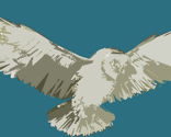 Rrflying_owl_copy_thumb