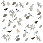 Rmd_birds_and_leaves_shop_thumb