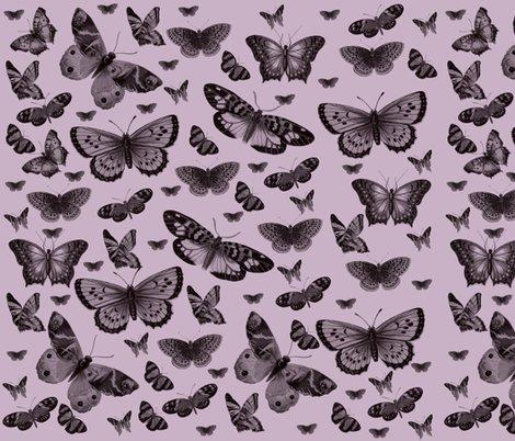 Rmd_butterflies_pretty_pink_shop_preview