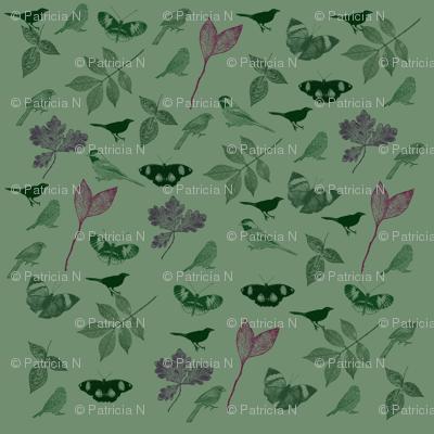 Green Birds and Butterflies