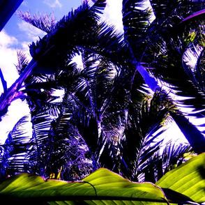 HAWAIIAN_ISLAND_SERIES_121