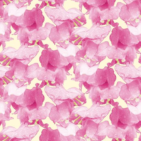 Bougainvillea fabric by pond_ripple on Spoonflower - custom fabric