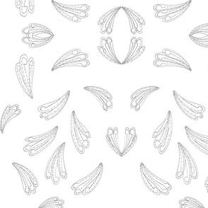 fan feathers