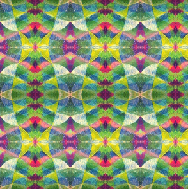 Kites (AKA 005:365)