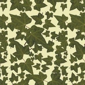 Antique Ivy