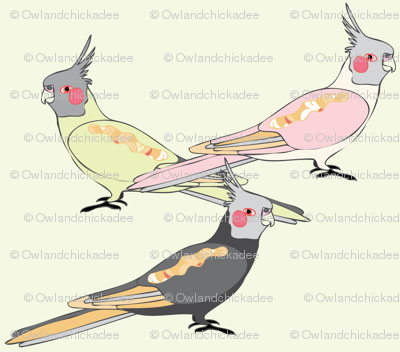Cockatiels - Light