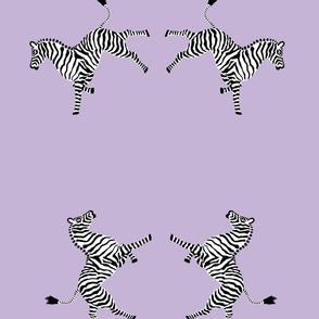 zebra hi5 lavender