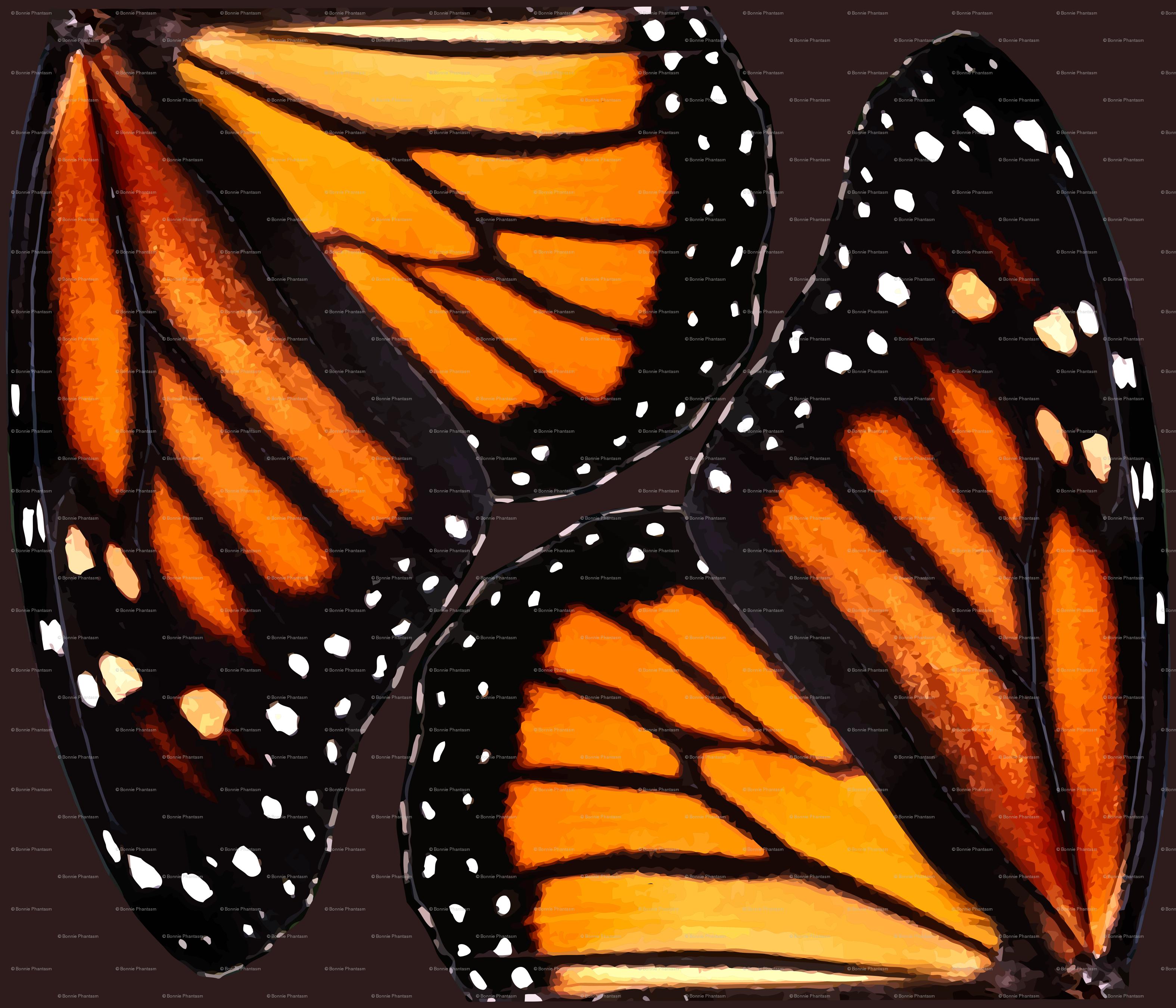 orange monarch butterfly wings wallpaper bonnie phantasm