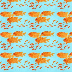 orange_fish_on_blue_