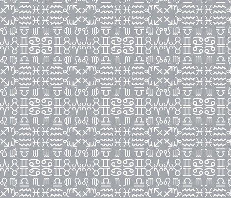 Rz1-grey_shop_preview
