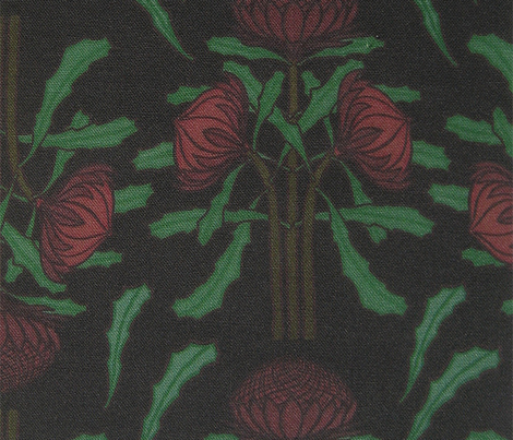 Rrrrrrdark-red-waratahs-on-dark-gray_comment_277277_preview