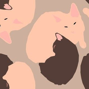 Kittens on Taupe