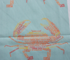 Rcancer_the_crab_light_comment_266148_thumb