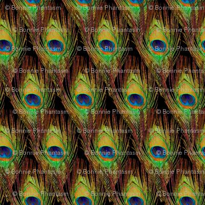 Peacock Feathers  -Single - Diamonds