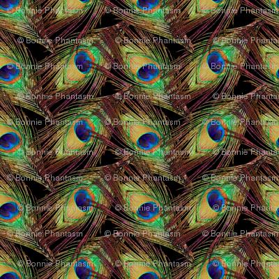 Peacock Feathers - Single - ZigZag