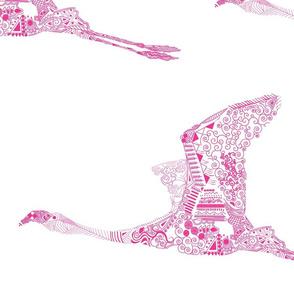 Fuchsia Flamingo