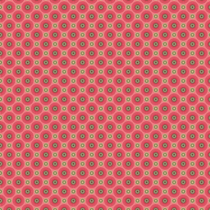 Hakea pink small