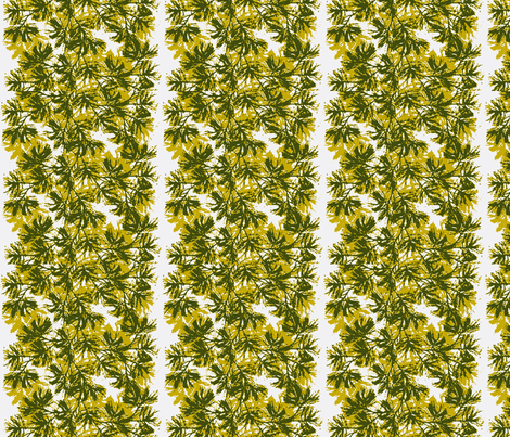 Piney Boughs fabric by flyingfish on Spoonflower - custom fabric