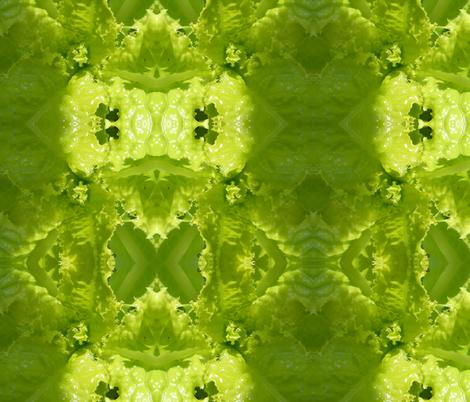 Slobolt Lettuce fabric by carmenscottagecreations on Spoonflower - custom fabric