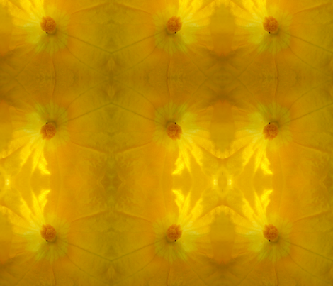 Squash Blossom fabric by carmenscottagecreations on Spoonflower - custom fabric
